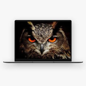 CHUWI ნოუთბუქი CoreBook X